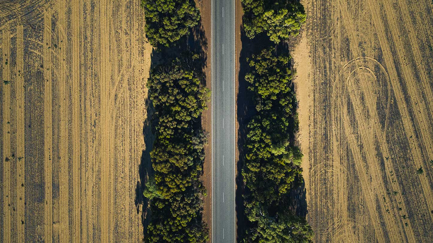 Drone shot of a treelined road in an agricultural field