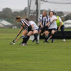 Typical hockey pitch surfaces natural grass